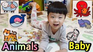 동물영어 이름 맞추기 놀이  Animal English name play