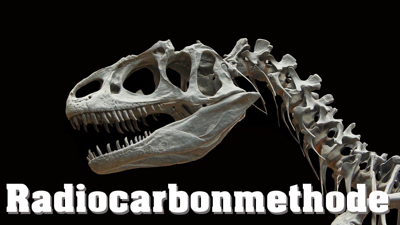 Was sind zwei Methoden der Datierung von Fossilien