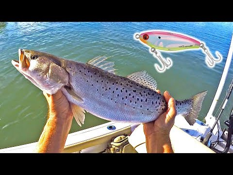 Using MIRROLURES To CATCH BIGGER TROUT! (Caught My New Personal Best!)
