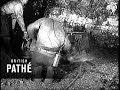 Us Coal Problems Lner (1938)