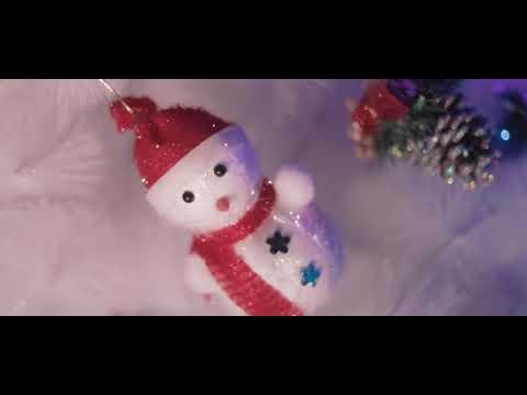 Dildora Niyozova - Shekilli | Дилдора Ниёзова - Шекилли (Yangi yil kechasi 2018)