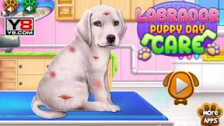 Уход за щенком лабрадора | Caring for a puppy Labrador