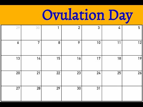 கர்ப்பம் அடைவது எப்படி? அதற்கான தீர்வுகள்  How to calculate ovulation date in tamil