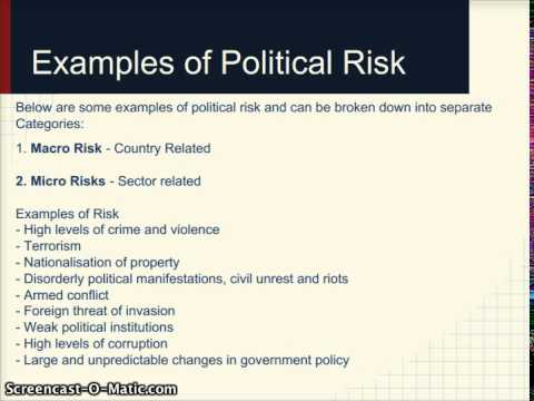 What Is Political Risk?