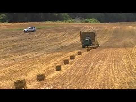 loading small square bale hay with 1033 balewagon newholland