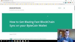 How To Instantly Synchronise Your Bytecoin Wallet