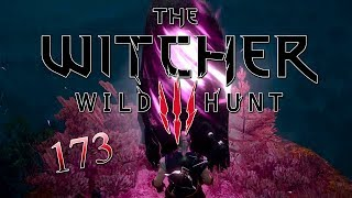 The Witcher 3 - Wild Hunt #173: Hexer Georgs Grab
