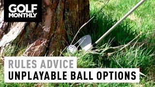 Rules Advice - Unplayable Ball Options