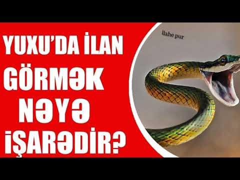 Yuxuda Ilan Gormek Youtube