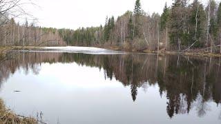 04 05 21 Первый выезд к озеру
