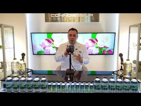 Terpenes Profiles - Mr Extractor