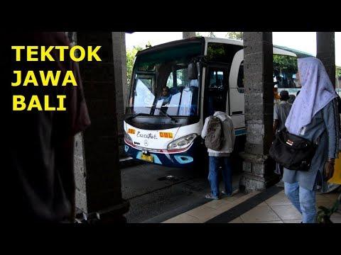 Naik Safari Dharma Raya(OBL) Ke Bali | Trip Tektok Jawa-Bali