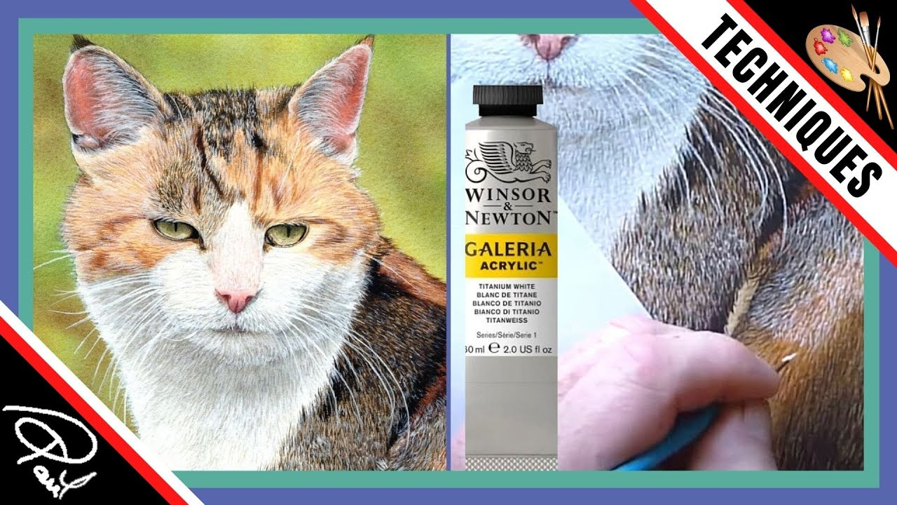 Cat Watercolour & Acrylic Painting Tutorial - How to paint ...