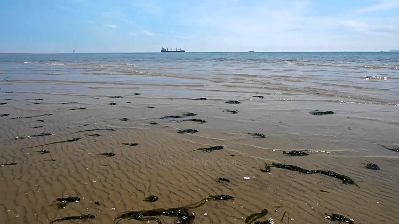 Shoeburyness East Beach Walk To Thames Estuary Channel