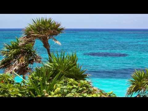 Opuštajuća Muzika - Muzika za Meditaciju, Letnji Talas, Priroda ,Instrumental Muzika | 3 SATA