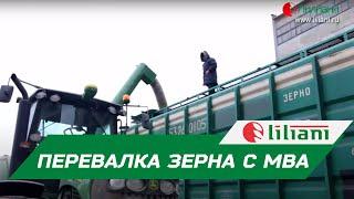 Загрузка вагонов-хопперов с помощью автомобильного перегрузчика МВА от компании