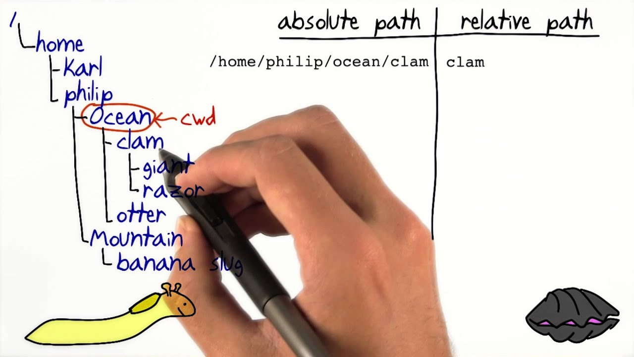 Absolute and Relative Paths