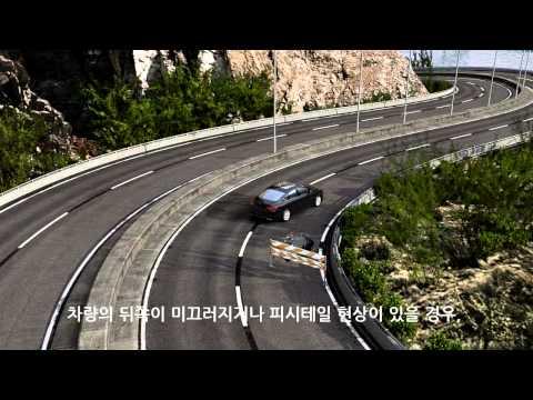 Chrysler 200 전자 제어 주행 안정 시스템 (Electronic Stability Control)