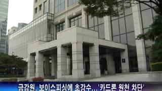 금감원, 보이스피싱에 초강수...'카드론 원천 …