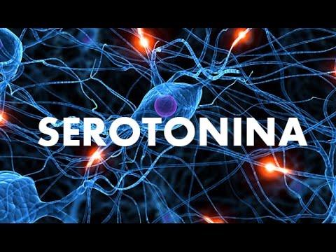 serotonina alta no exame de sangue