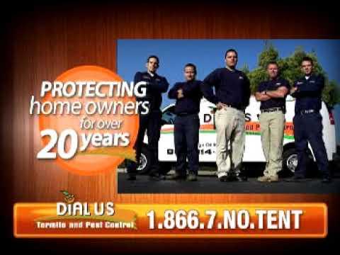 Dial Us Termite
