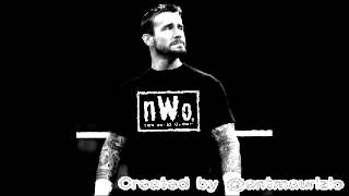 WWE: CM Punk (nWo Theme 2012)