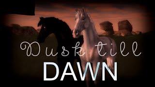 Star Stable Online [MV] - Dusk Till Dawn