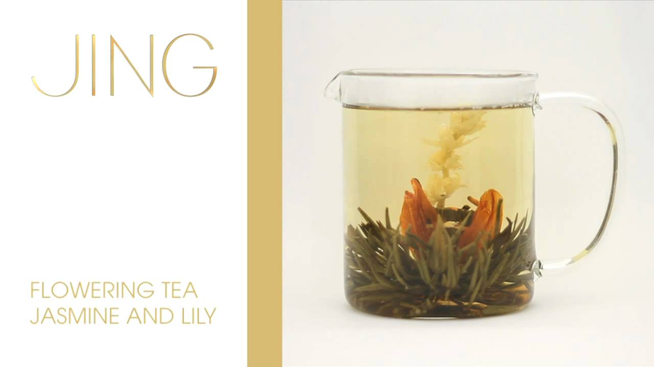 Jing Tea Flowering Jasmine And Lily Tea Youtube