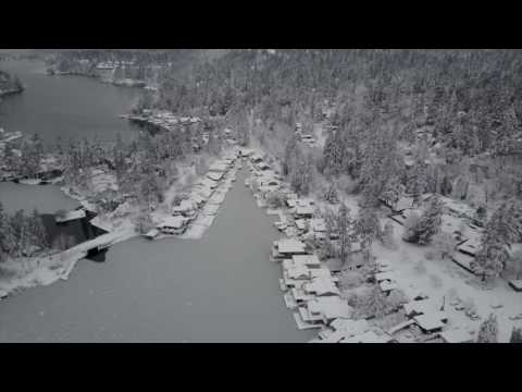 Drone footage captures historic snowfall and a frozen Lake Oswego