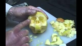 不気味過ぎ。果物やお野菜でドクロをカービングする骸骨職人の制作風景