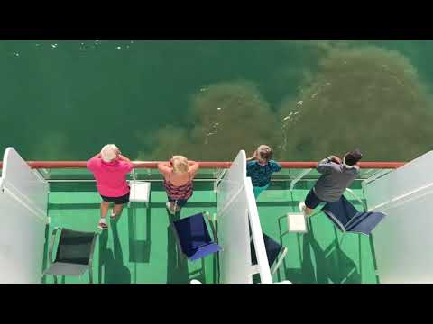 Cruising out of Malaga port - Spain April 13, 2017