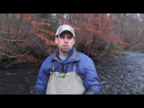 Fly Fishing: Tips For Stopping The Spread Of Invasive Species