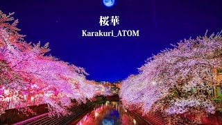 絡繰ATOM ( からくりあとむ ) より 【桜華~Sakurabana~】をリリース...