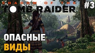 Shadow of the tomb raider #3 Опасные виды