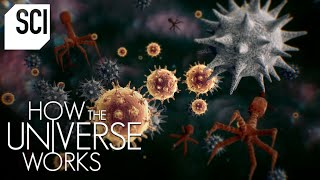 The Invisible Microcosmos   How the Universe Works