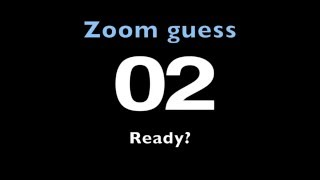 Zoom guess game
