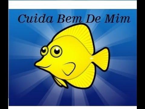 Vai comprar um peixe? Faça um estudo detalhado!!