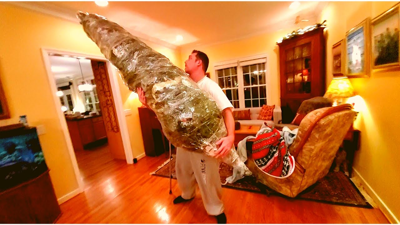 Wrap Up and Store your Christmas tree in plastic wrap in ...