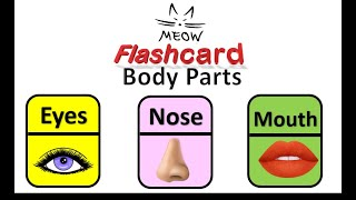 Meow Flashcards body parts ! screenshot 1