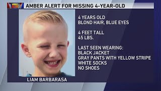 Amber Alert Issued After Vehicle Stolen In Bridgeview With 4-year-old Boy Inside