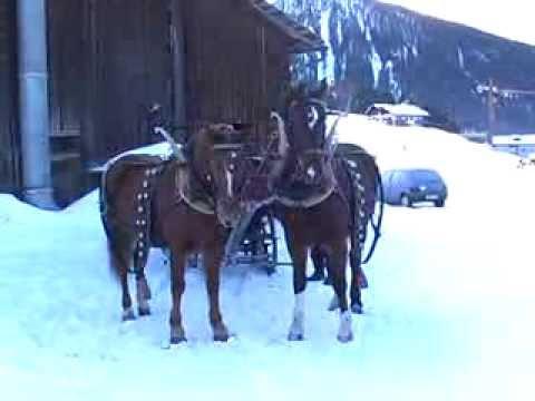 Kutschenfahrt  Davos Dorf ins Sertig Januar 2008