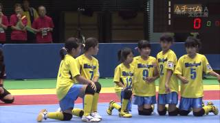 2013年第4回全日本女子ドッジボール選手権 全国大会 D-1G 決勝戦