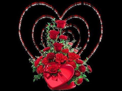 Loài hoa đẹp tượng trưng cho tình yêu đôi lứa