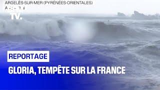 Gloria, tempête sur la France