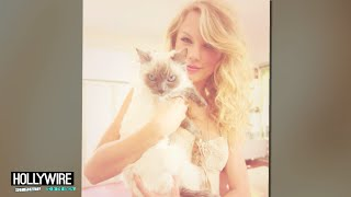 Taylor Swift's TOP 5 Cat Instagram Moments!