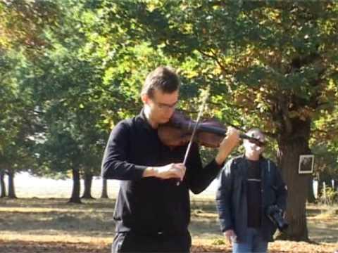 Alexandru Tomescu -concert pentru stejari