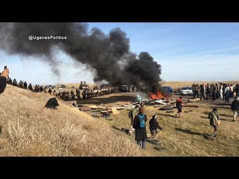 """""""A Shameful Moment for This Country"""": Report Back on Militarized Police Raid of DAPL Resistance Camp"""