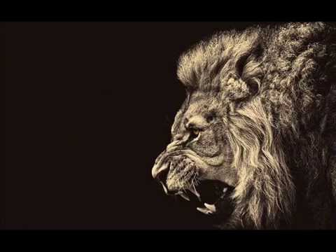 Best Motivational Speech, Music | Lion Edition 2014
