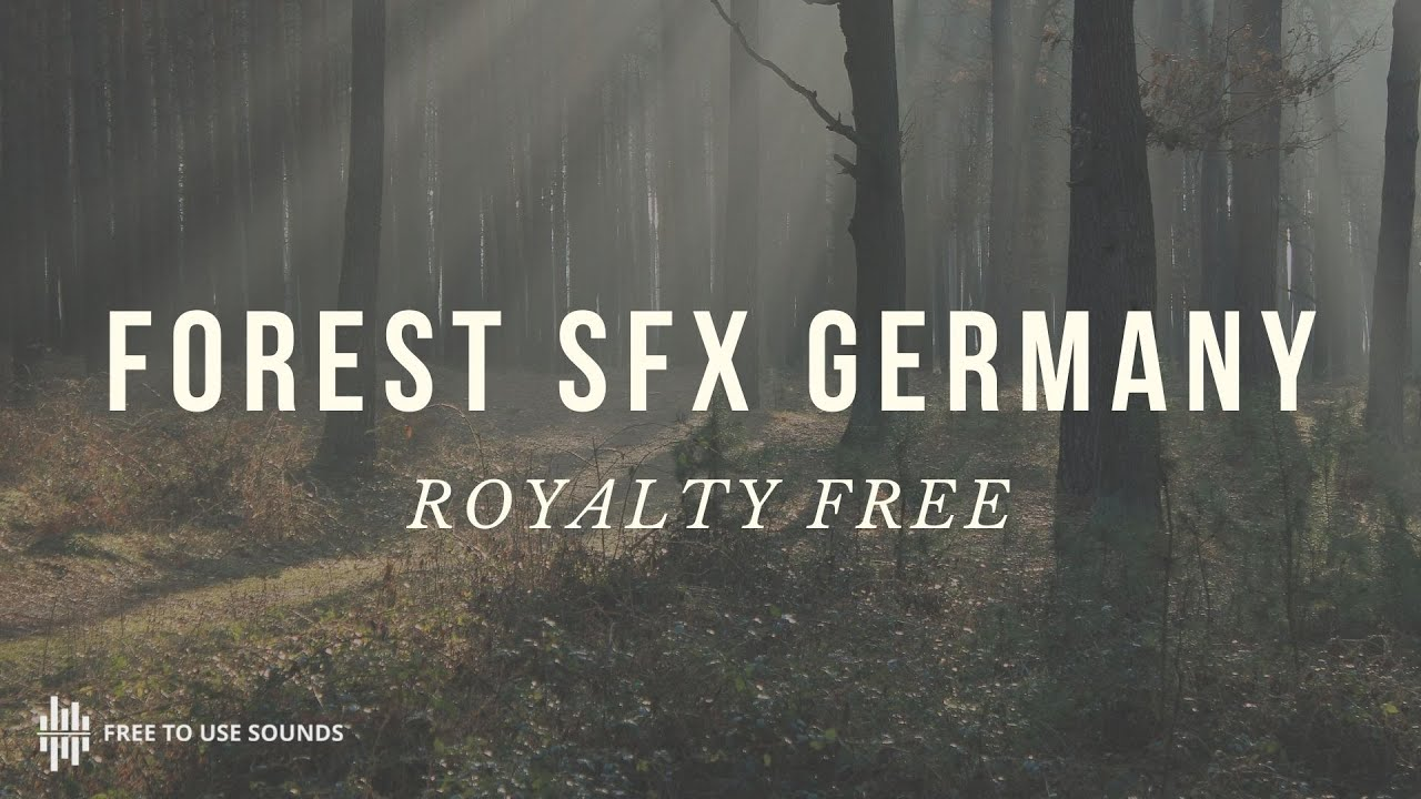Forest sound effects with birds! Nature Sounds Germany