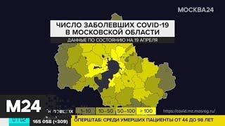 Число инфицированных коронавирусом в Москве достигло 24 324 - Москва 24